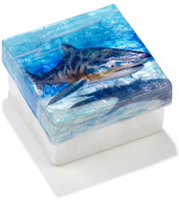 Shark in blue waters trinket box.